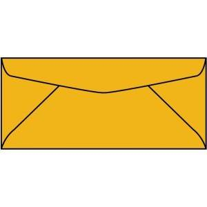 WS2712  4.12 x 9.5 Roptex Regular Envelope