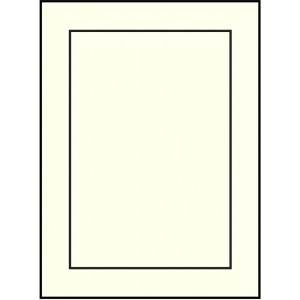 WS6448  4.62 x 6.25 Baronial Embossed Panel Card - Ultra White