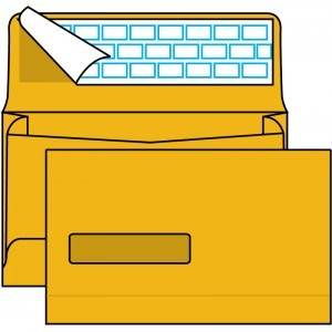 Poly Window Open Side Expansion Mailer